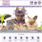Creature Concierge I Pet Care Specialists Dallas