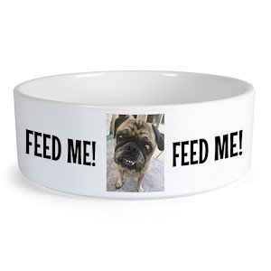 Creature Concierge - Pet Personalized Food Bowl