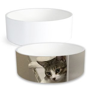 Creature Concierge - Pet Personalized Small Ceramic Food Bowl